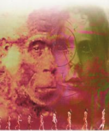 L'antropologia filosofica oggi