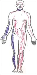 percezione-corpo-luigi