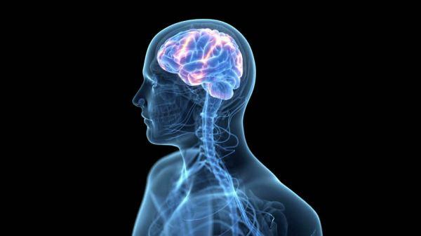 920907435-energia-elettrica-elaborazione-elettronica-di-dati-cervello-anatomia